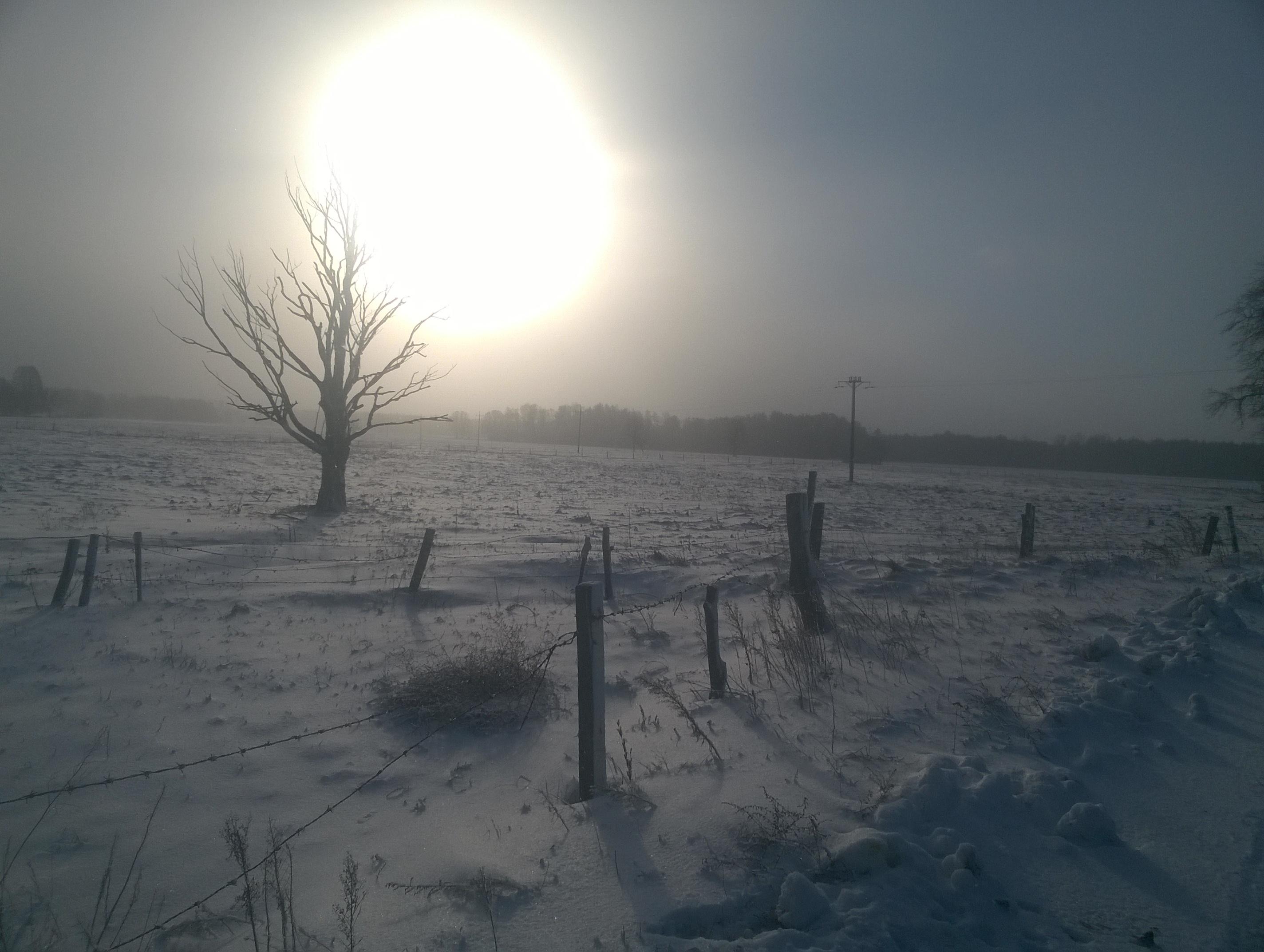Widok na zaśnieżone pola. Białe szaleństwo!