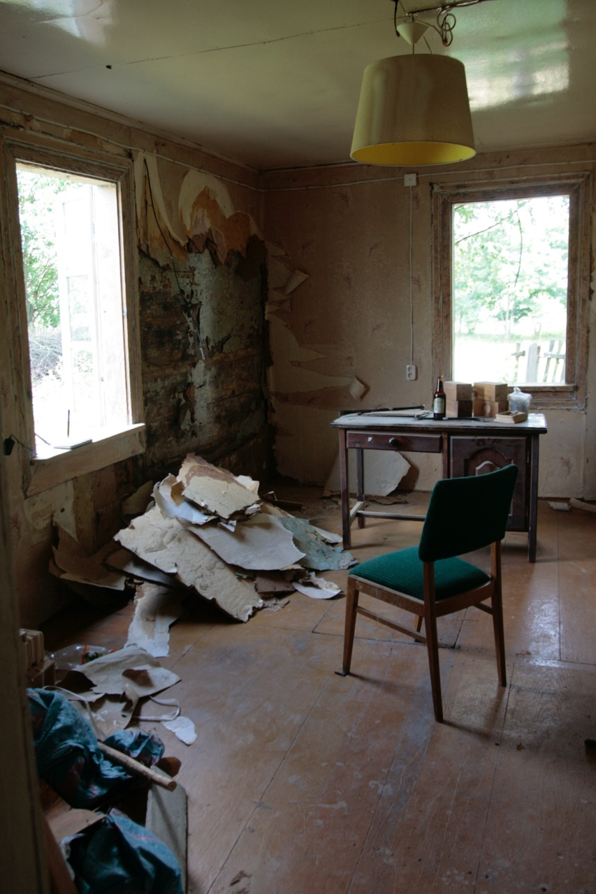 demolka remont a'la Dorota Szelągowska ściany w ruinie