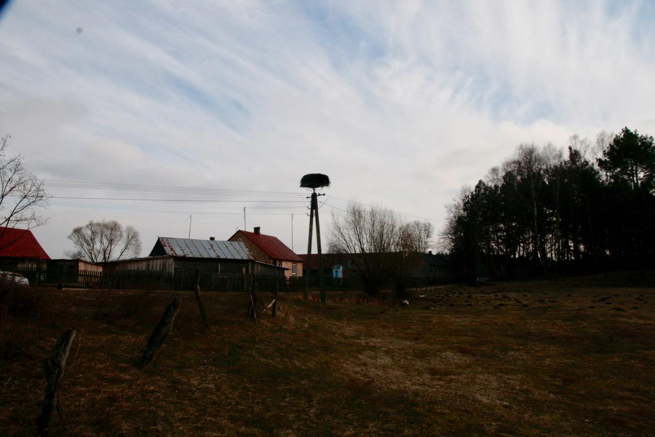 Opuszczone bocianie gniazdo za stodołą.