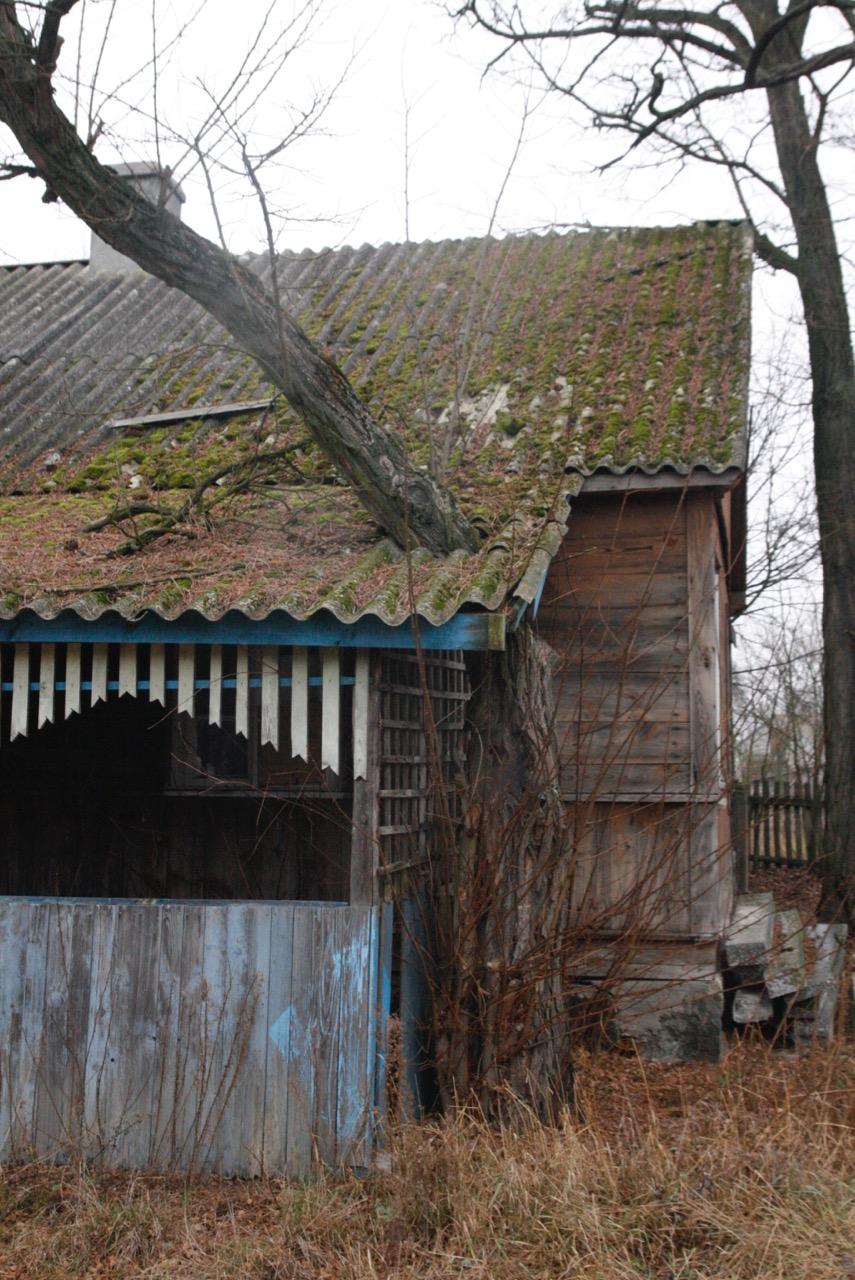 akacja drewniana chata